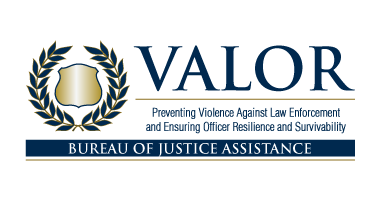 VALOR Initiative Logo