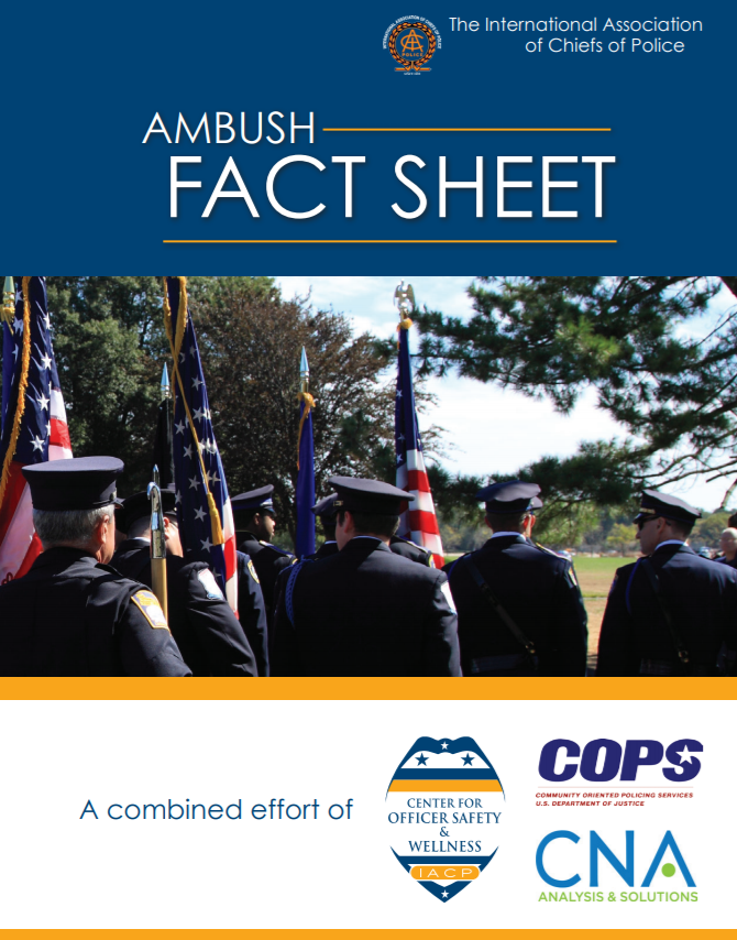 Ambushes Fact Sheet PDF