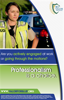 Image for Professionalism Is a Choice Poster