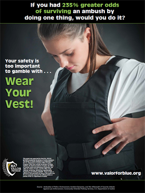 Image for Wear Your Vest Poster