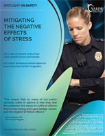 Image for Mitigating the Negative Effects of Stress Poster