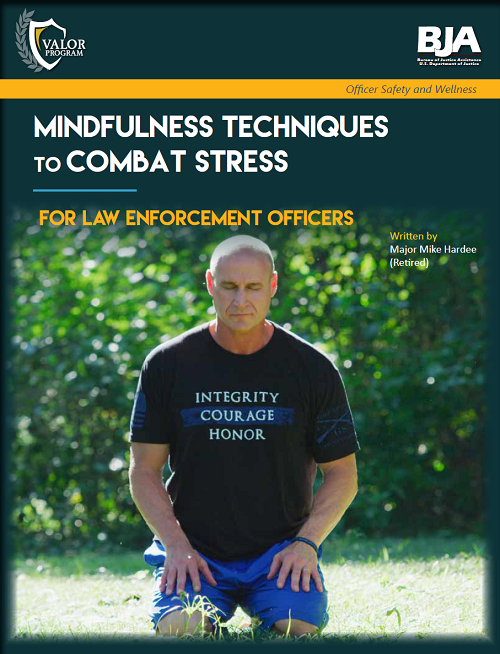 Article on Mindfulness Techniques To Combat Stress