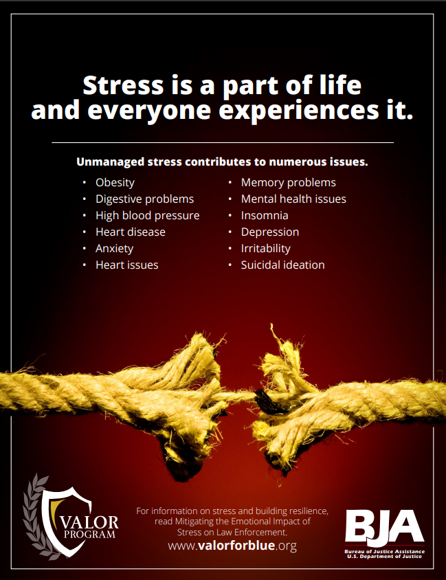 Article on stress flyer